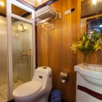 golden-star-cruise-bathroom1