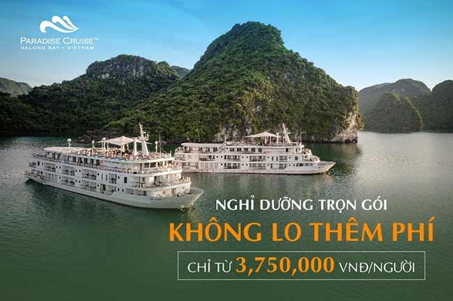 """Tour du lịch nghỉ dưỡng trên du thuyền """"triệu đô"""" Paradise Elegance"""