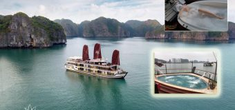 Du Thuyền Orchid Trendy Cruises 2021